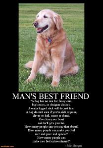 dog-mans-best-friend