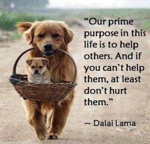 Dalai-Lama-on-Helping-Others1