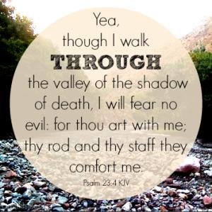 19517-Psalm-23-4