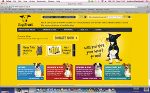 dogtrust2013-05-20-at-11-42-21