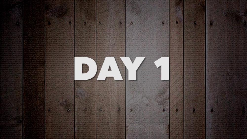 1daypic