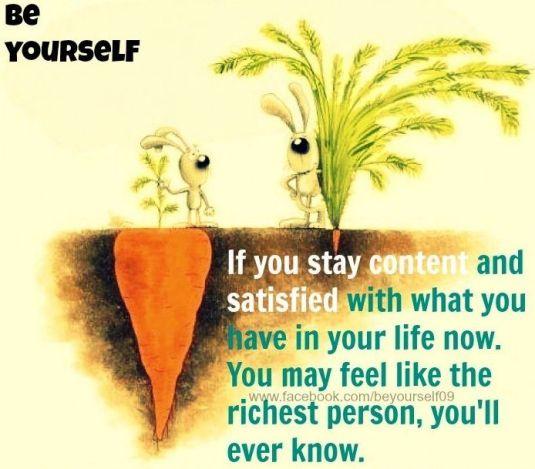 403603566d2668afff0479f67919664d--contentment-quotes-joy-quotes