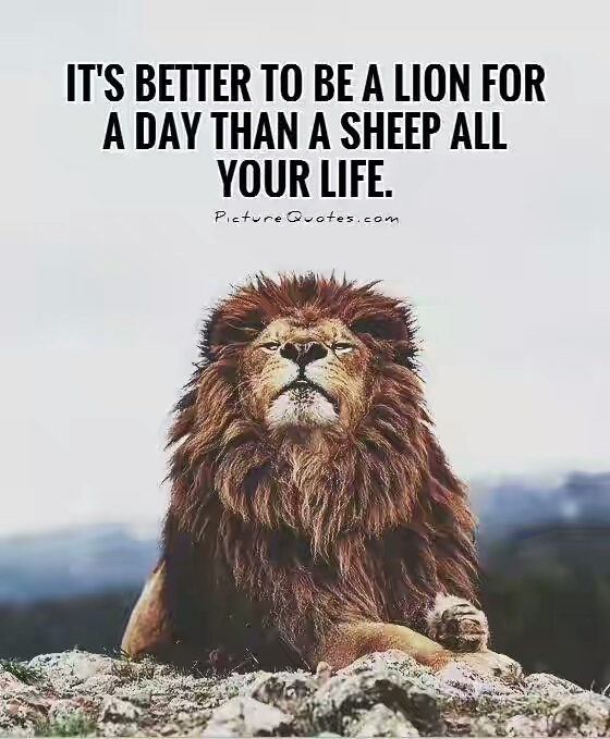 its-better-to-be-a-lion-for-a-day-than-a-sheep-all-your-life-quote-1