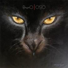 Brymo_-_Oṣó_album_cover